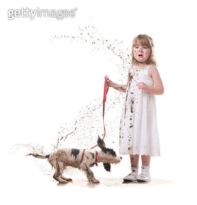 little girl takes a puppy for a walk in her best dress - gettyimageskorea