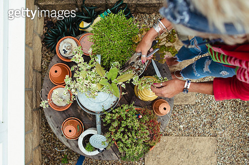 Senior woman standing outdoors over a small wooden table of plants in their pots. - gettyimageskorea