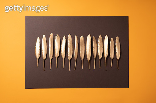 Gold Feathers - gettyimageskorea