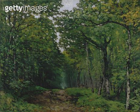 <b>Title</b> : The Avenue of Chestnut Trees at La Celle-Saint-Cloud, 1867 (oil on canvas)<br><b>Medium</b> : oil on canvas<br><b>Location</b> : Southampton City Art Gallery, Hampshire, UK<br> - gettyimageskorea