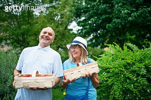Senior couple holding strawberries punnets - gettyimageskorea