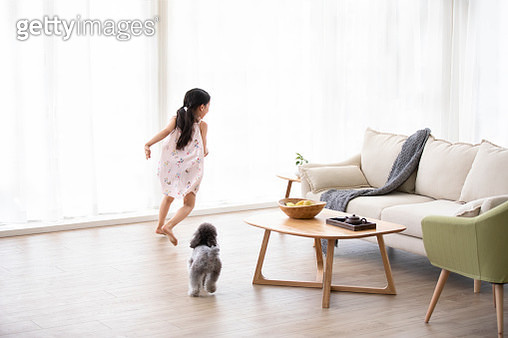 Little Chinese girl playing with dog in living room - gettyimageskorea