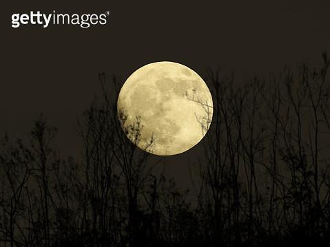 Moonrise - gettyimageskorea