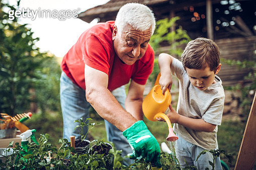 Grandfather and grandson in garden - gettyimageskorea