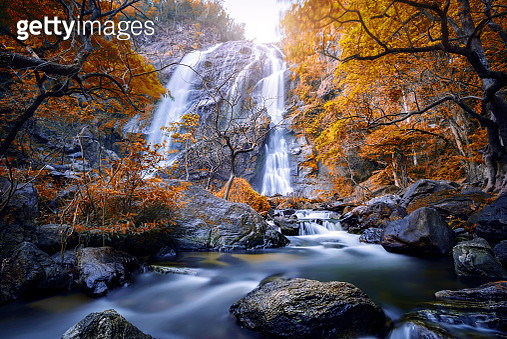 Autumn leaves with Khlong Lan Waterfall , Kamphaeng Phet Province, Thailand . popular with waterfall tourists . - gettyimageskorea