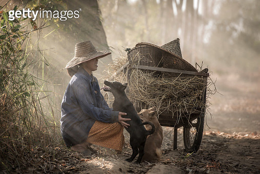 A woman with her dogs in Thailand. - gettyimageskorea