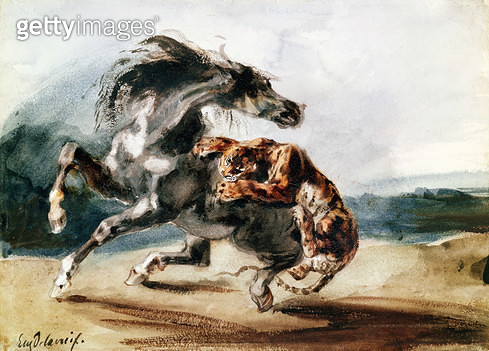 <b>Title</b> : Tiger Attacking a Wild Horse (pen & ink and w/c on paper)<br><b>Medium</b> : <br><b>Location</b> : Louvre, Paris, France<br> - gettyimageskorea