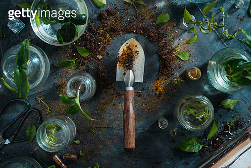 Gardening spade in a planting scene with soil and green plants. Saving environment concept.... - gettyimageskorea