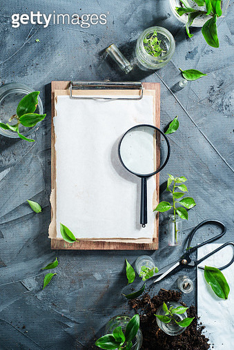 Botanist workplace overhead shot with clipboard, field notes magnifying glass, gardening scissors... - gettyimageskorea