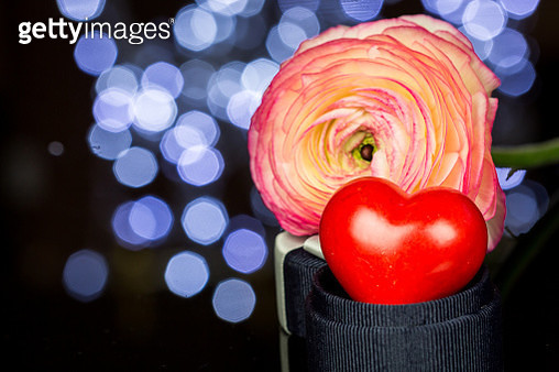 Close-Up Of Heart Shape And Rose In Darkroom - gettyimageskorea