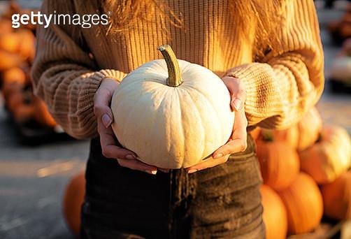 White Pumpkin - gettyimageskorea