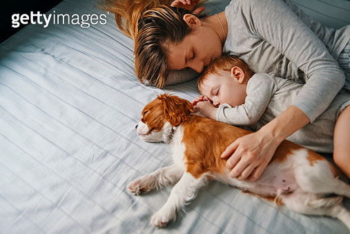 young mother enjoying napping with her baby and puppy - gettyimageskorea