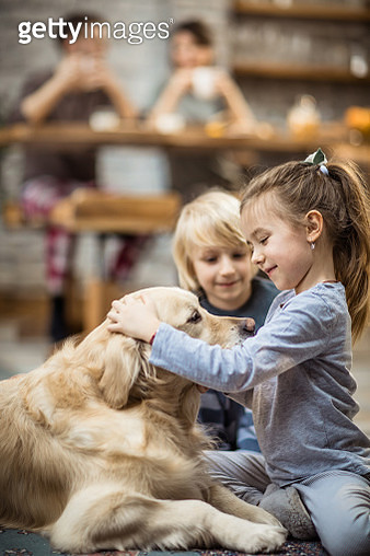 Happy kids enjoying with their dog at home. - gettyimageskorea