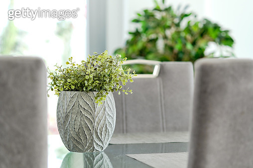 Close-up of potted plant on glass table in living room - gettyimageskorea