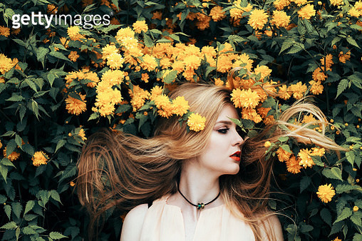 Yellow flowers - gettyimageskorea