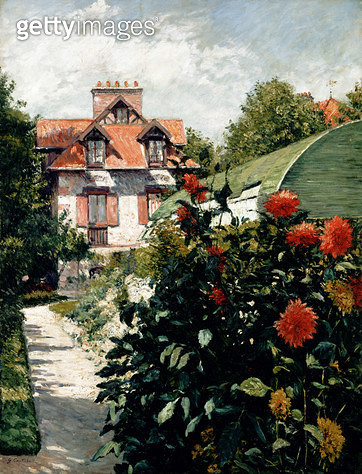 <b>Title</b> : The Dahlias, garden at Petit Gennevilliers, 1893 (oil on canvas)Additional InfoLes Dahlias, jardin du Petit Gennevilliers;<br><b>Medium</b> : oil on canvas<br><b>Location</b> : Private Collection<br> - gettyimageskorea