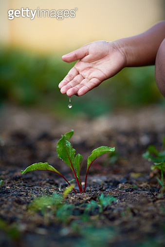 Care for and conserve nature - gettyimageskorea