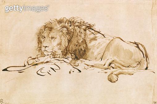 <b>Title</b> : Lion Resting (pen and ink on paper)<br><b>Medium</b> : <br><b>Location</b> : Louvre, Paris, France<br> - gettyimageskorea