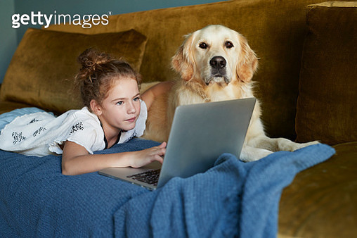 Girl lying on sofa & typing on laptop with her Golden Retriever dog - gettyimageskorea