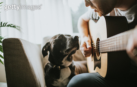 Man sings to his pet - gettyimageskorea