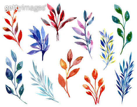 Watercolour illustration of colourful leaves - gettyimageskorea