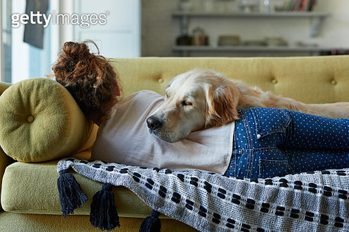 Girl sleeping on couch with her Golden Retriever dog - gettyimageskorea