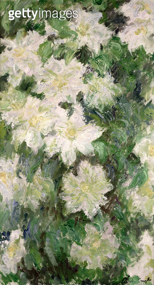<b>Title</b> : White Clematis, 1887 (oil on canvas)<br><b>Medium</b> : oil on canvas<br><b>Location</b> : Musee Marmottan, Paris, France<br> - gettyimageskorea