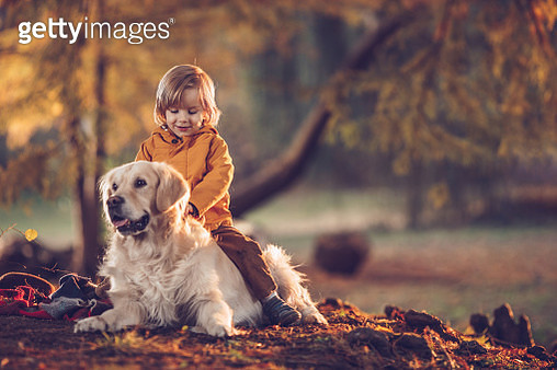 Happy little boy enjoying while sitting on his dog's back during an autumn day at the park. - gettyimageskorea