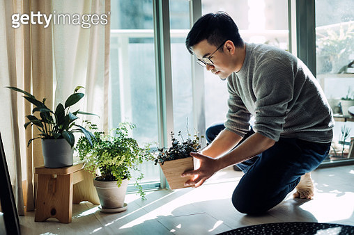 Cheerful young Asian man enjoying his time at home. He is taking care and watering plants in the living room by the balcony in the morning - gettyimageskorea