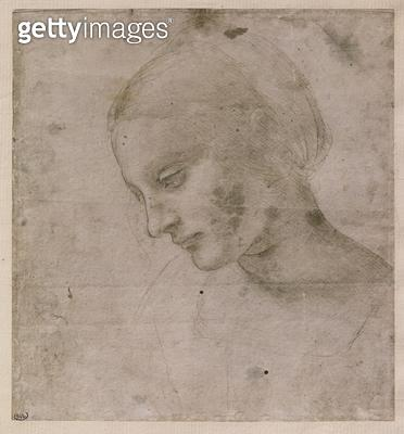 <b>Title</b> : Head of a Young Woman or Head of the Virgin, c.1490 (silverpoint on paper)Additional InfoTete de Jeune Femme ou Tete de Vierge;<br><b>Medium</b> : silverpoint on paper<br><b>Location</b> : Louvre, Paris, France<br> - gettyimageskorea