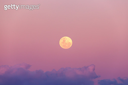 Beautiful pink and purple full moon rise at sunset  on the Gold Coast Australia - gettyimageskorea