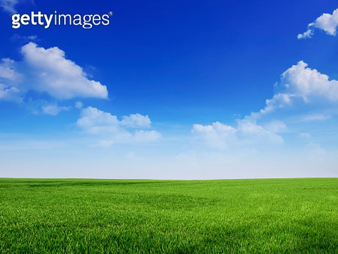 peaceful blue sky and green grass great as backround - gettyimageskorea