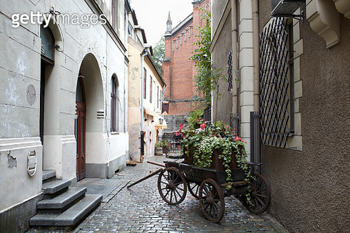 Riga, Latvia. Carriage with flowers. - gettyimageskorea