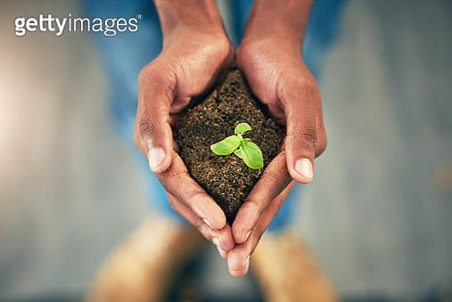 Nurturing nature - gettyimageskorea