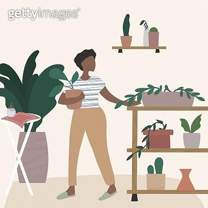 indoor, plant, plants, room, interior, room decoration, apartment, organic, women, fashionable, succulent - gettyimageskorea