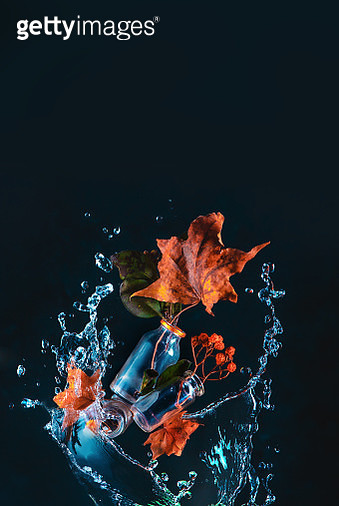 High-speed water splash with maple leaves, tiny bottles, and rowan berries. Autumn bouquet concept. Action conceptual still life with copy space - gettyimageskorea