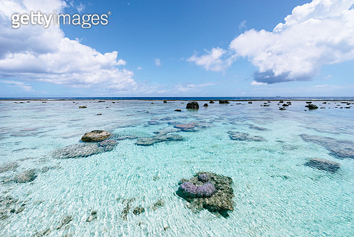 Tropical beach with coral reef lagoon, Amami Gunto National Park, Japan - gettyimageskorea