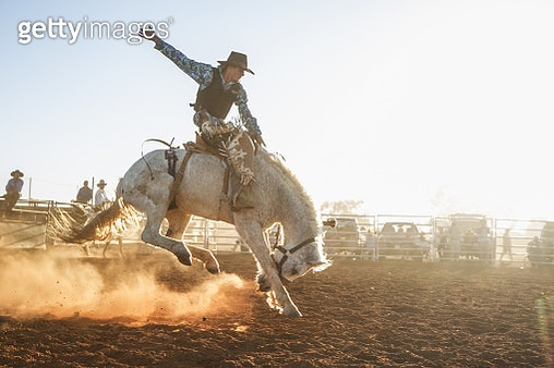 A cowboy riding a bronco in the afternoon dust at a rodeo. - gettyimageskorea