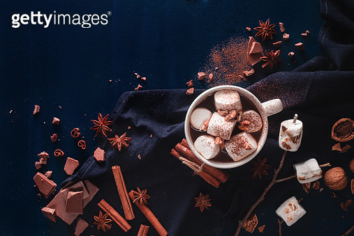 A cup of hot chocolate with cinnamon and roasted marshmallows on a stick - gettyimageskorea