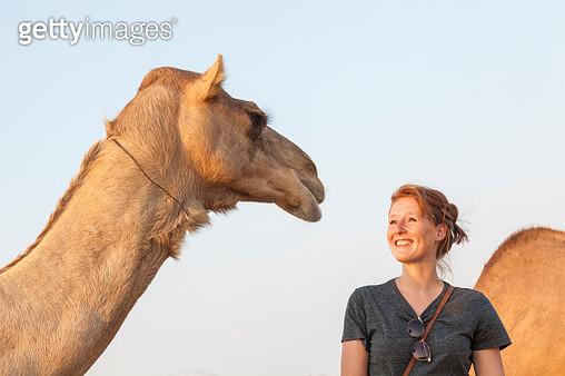 UAE, happy woman looking at a camel - gettyimageskorea
