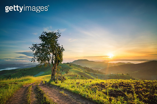 Summer landscape mountain path with sun dogs in the sky at sunrise - gettyimageskorea