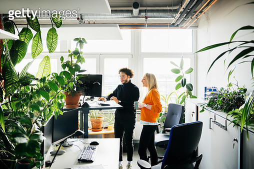 Two Colleagues Looking At Work Using Standing Desk - gettyimageskorea