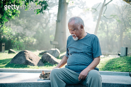 Lovely Senior Man Playing with Cat at The Park - gettyimageskorea