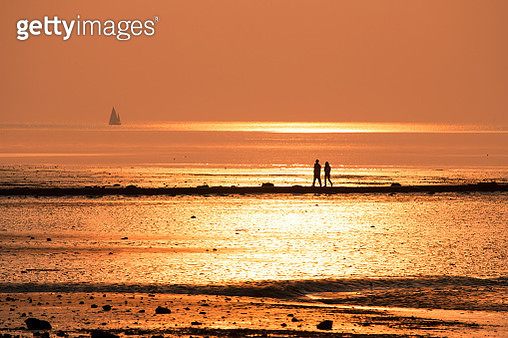 A Couple in the Middle of Golden Sunset - gettyimageskorea