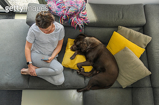 Overhead view of a woman on her phone. Her pet dog sleeps beside her - gettyimageskorea