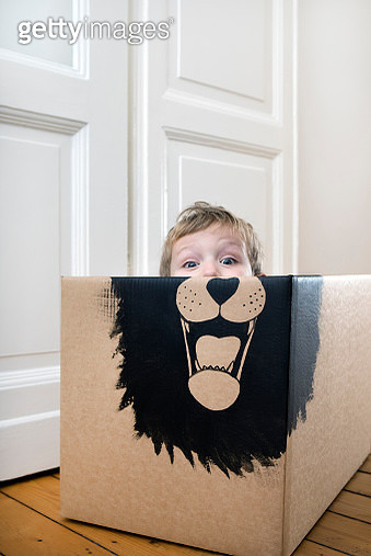 Boy inside a cardboard box painted with a lion - gettyimageskorea