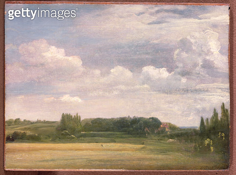 <b>Title</b> : View towards the Rectory, East Bergholt, 1813 (oil on canvas)<br><b>Medium</b> : oil on canvas<br><b>Location</b> : Private Collection<br> - gettyimageskorea