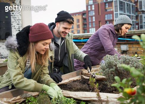 Young people working in urban roof garden. - gettyimageskorea