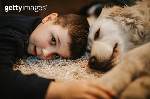 Happy little boy playing with dog at home - gettyimageskorea