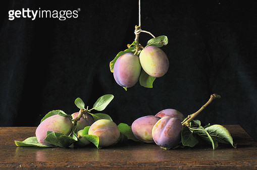 Still Life with Heritage 'Vision' Plums - gettyimageskorea
